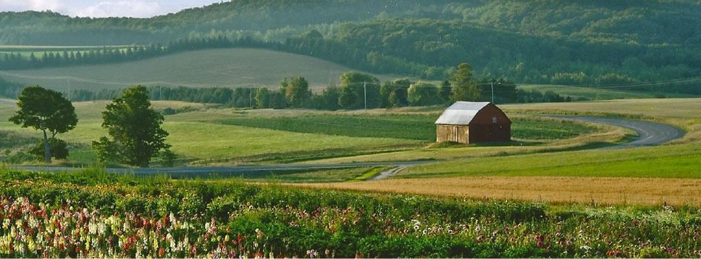 farm-image