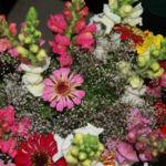 flowerscweb2