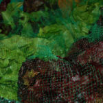lettuceweb2