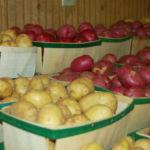 potatoesweb2